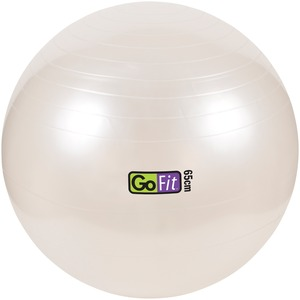 65CM EXERCISE BALL WITH - GF-65BALL - GOFIT